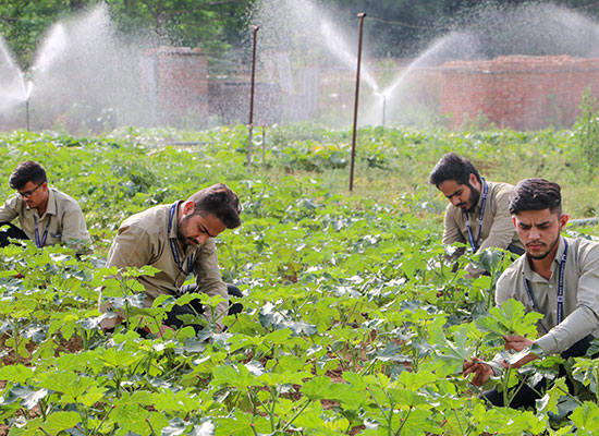 Agriculture Courses
